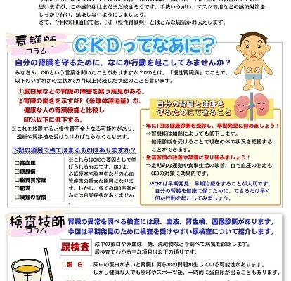 CKD通信12号