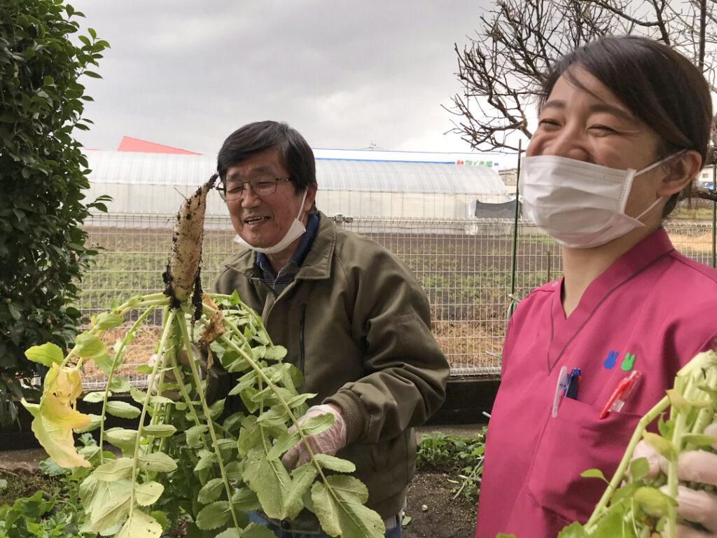 冬野菜を育てて味わう2
